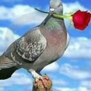 jasadb547765's profile photo