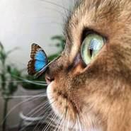 oliviat745518's profile photo