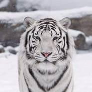 weronikak727683's profile photo