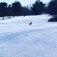 birds78's profile photo