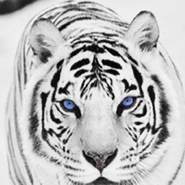 midom63's profile photo