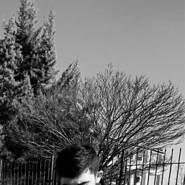 ercanc831943's profile photo
