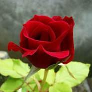 abdulr2551's profile photo