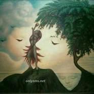 sachinn727341's profile photo