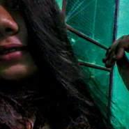 sarahfarias2020's profile photo