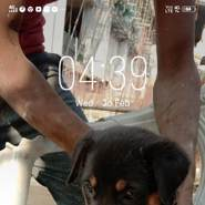 manashhaka512474's profile photo
