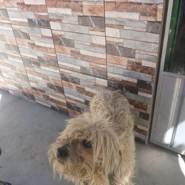 deyvij964396's profile photo
