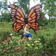 widiaa843405's profile photo