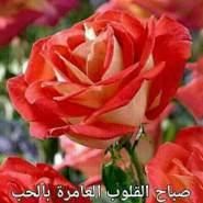 user_nfe85146's profile photo