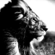 mahmood608708's profile photo