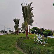 sabaha845134's profile photo
