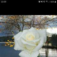 carlosp200's profile photo
