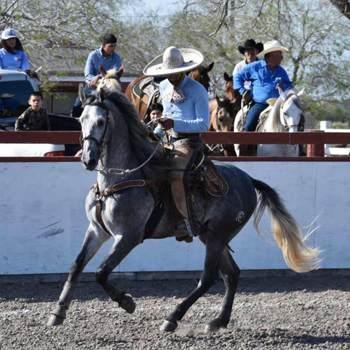 edgarl502101_Texas_Célibataire_Homme