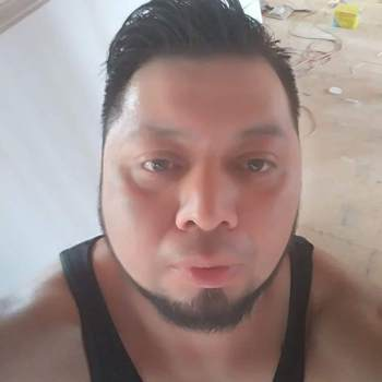 brunoh245180_Pennsylvania_Single_Male