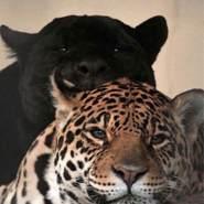 mia_special's profile photo