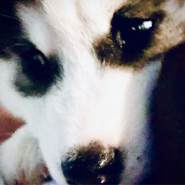 aaron557261's profile photo