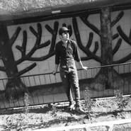 boaabs647028's profile photo