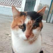 ilyesj13633's profile photo