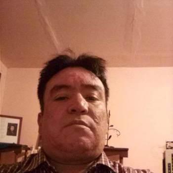 josec454813_Chihuahua_Bekar_Erkek