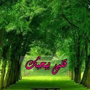 aalaa855713's profile photo