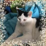 claytonf986345's profile photo