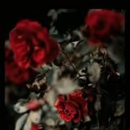 mohammadm430156's profile photo
