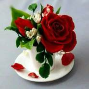 karimm546585's profile photo
