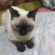 mohdyousifm's profile photo