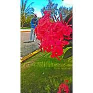 bladimilr836638's profile photo