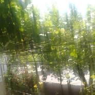 zainz631158's profile photo