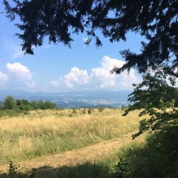 roby711_Emilia-Romagna_Svobodný(á)_Muž