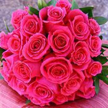 novan342672_Al Jizah_Singur_Doamna