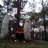 alisterc82375's profile photo