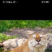 userxzd14972's profile photo