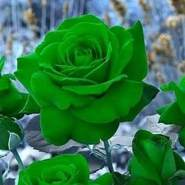 mohammeda682652's profile photo