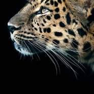 intzara634857's profile photo