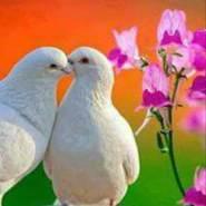ghalebh973771's profile photo