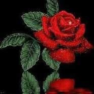 rohola613645's profile photo