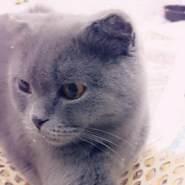 yassin135368's profile photo