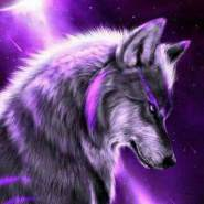 natachelyr's profile photo