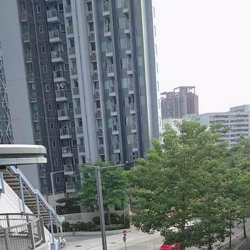 rajar011629_Hongkong, Specjalny Region Administracyjny Chin_Kawaler/Panna_Mężczyzna