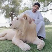 princehamanmohammed's profile photo
