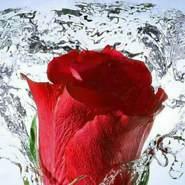 mahmouda226583's profile photo