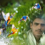 mhmd419840's profile photo