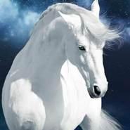 alm5228's profile photo