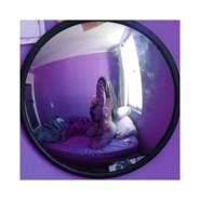josem499075's profile photo