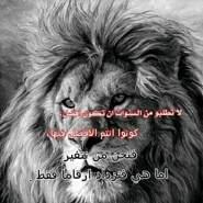 mgd1038's profile photo