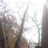 nedar941's profile photo