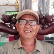 honganl923203's profile photo