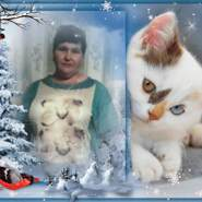 allak13's profile photo